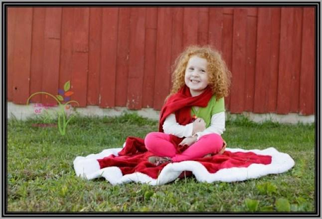 Christmas-Mini-Sample-4739