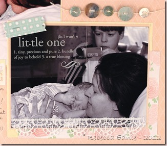teddy newborn layout right side 3