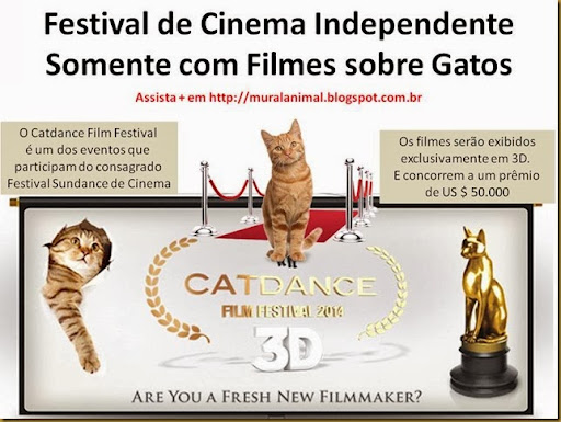 Festival de Cinema Independente