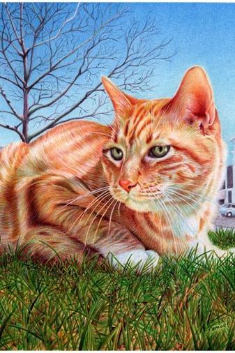 Desenho de gato feito de caneta BIC
