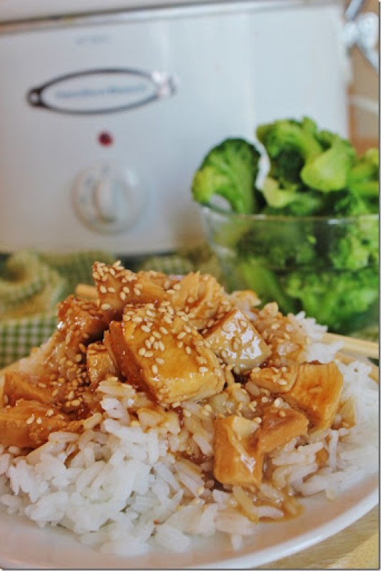 Slow Cooker Recipes: Slow Cooker Teriyaki Chicken