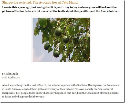 Image result for Sharpeville revisited: The Avocado tree at Cato Manor