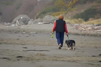 Abby play time at Harris Beach