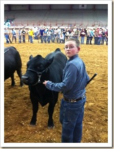 justin with steer