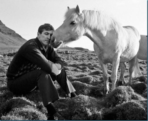 fischer-white-horse