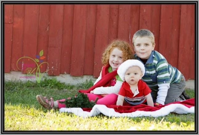 Christmas-Mini-Sample-4623