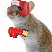 Mouse_fighter.jpg