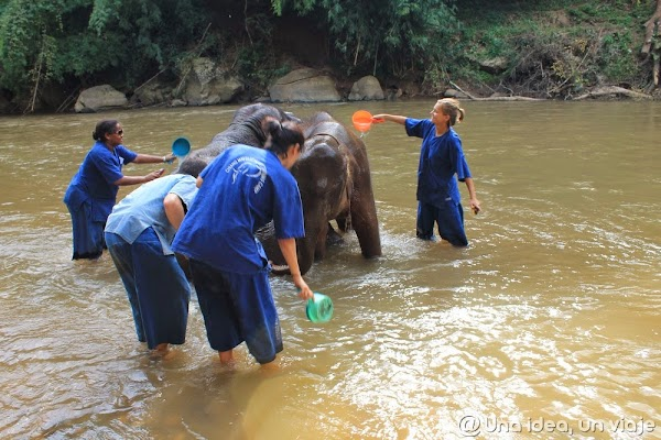 elefantes-negocio-tailandia-montar-unaideaunviaje.com-3.jpg