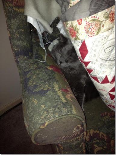 hiding January 12.2013