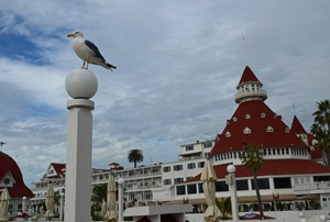 a walk around the Hotel Del Coronado