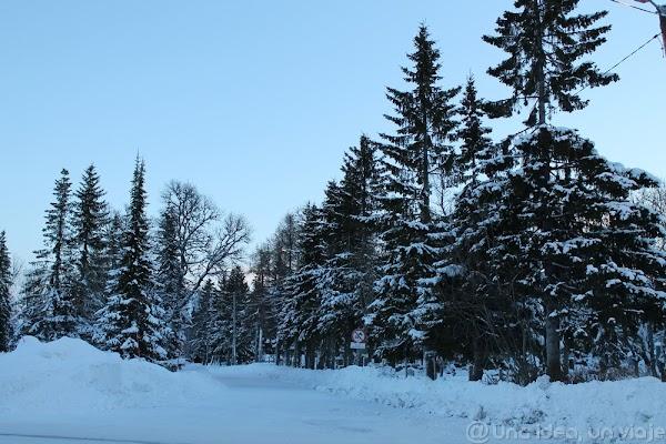 Tromso2.jpg