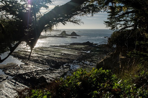 Day 3 Cape Arago Lighthouse (3 of 16)