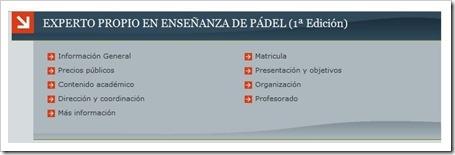 Curso Propio de Experto Universitario en la Enseñanza del Pádel, I Edición, Universidad de Granada.
