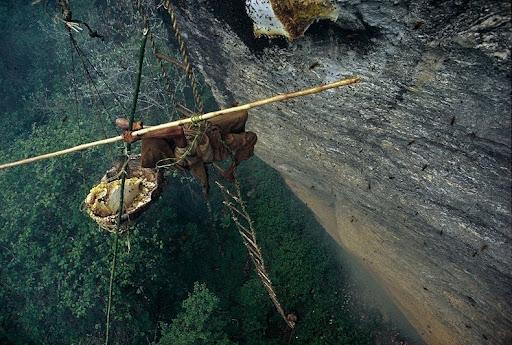 honey-cacciatori-nepal-7