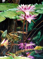 Acuarela Xiaochang Zhang watercolor