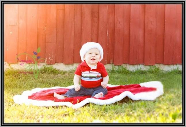 Christmas-Mini-Sample--2