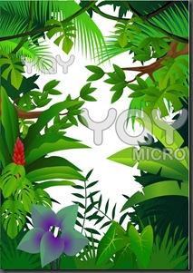 jungle-38c820