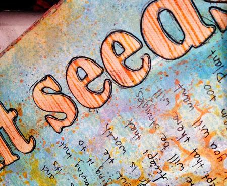 Melita Bloomer - Plant Seeds 3