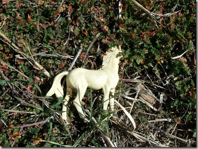 09 Toy horse found along Johnson Canyon Rd UT (1024x768)