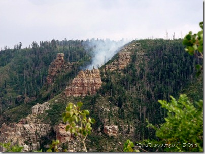 Woolsey fire north of Pt Imperial overlook Kaibab National Forest Arizona