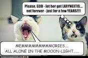 Laryngitis Kitties.jpg