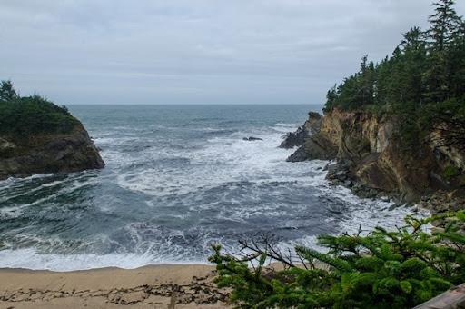 hiking Cape Arago (2 of 37)