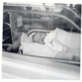 babydavid1-2012-08-23-08-00-2012-11-4-08-40-2012-12-1-07-54-2012-12-29-06-37.jpg