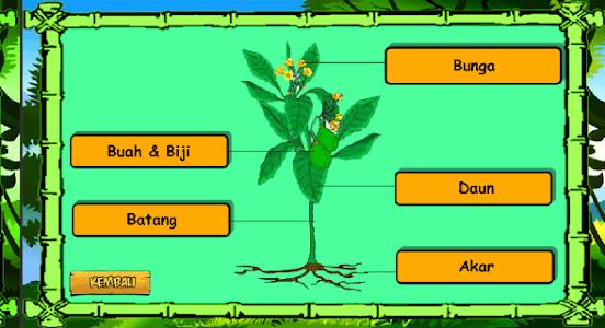 Biologi - Jaringan Tumbuhan screenshot 1