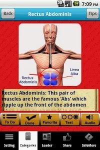 3D Muscle System screenshot 2