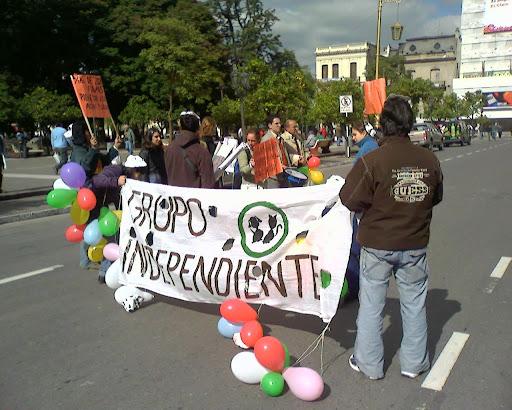Manifestantes del 29 de Mayo