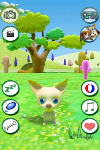 Talking Chihuahua Free screenshot 0