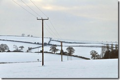 Snowscape with power lines