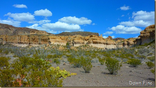 Big Bend Ranch State park_106