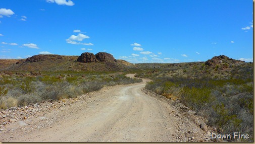 Big Bend Ranch State park_044