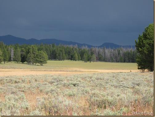 Yellowstone Jeffs pics_20090906_001
