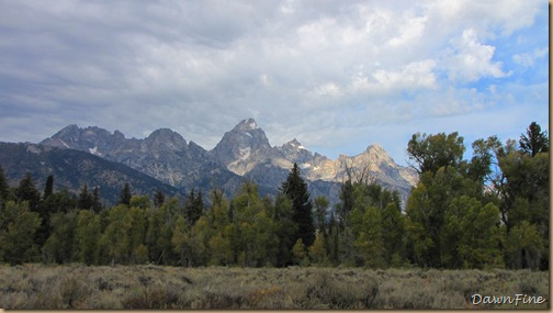 Drive in tetons_20090913_067