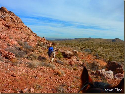horseback riding with merrilee_009