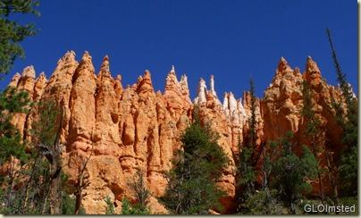 Hoodoos from Navajo Loop trail Bryce Canyon National Park Utah