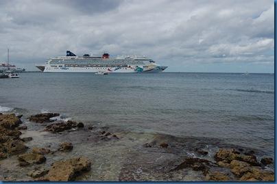 cruiseplus 434