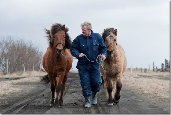 Ingi Sveinbjoernsso leads his horses on a road covered volcanic ash back to his barn in Yzta-baeli, Iceland on April 18, 2010. They come galloping out of the volcanic storm, hooves muffled in the ash, manes flying. 24 hours earlier he had lost the shaggy Icelandic horses in an ash cloud that turned day into night, blanketing the landscape in sticky gray mud. (HALLDOR KOLBEINS/AFP/Getty Images) #