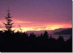lilac-summer-sky