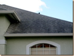 Tampa Non Pressure Roof Cleaning 045