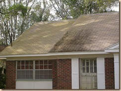 Tampa Roof Cleaning 001