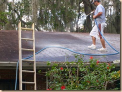 Tampa Roof Cleaning 010