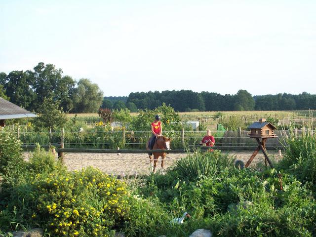 Pferde- und Reiterhof Glau-Trebbin