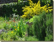 garden may 1_1_1