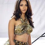 Actress anushka spicy b grate pictures
