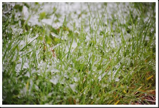 Snow 118-365