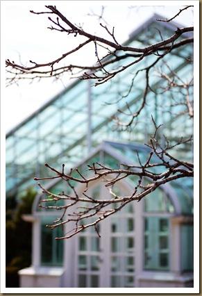blue glass greenhouse