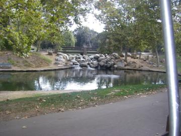 Pond at Irvine Regional Park.